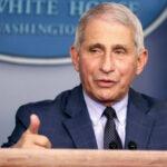 Fauci Warns, US May See 'Surge Upon Surge' Of Virus In Weeks Ahead