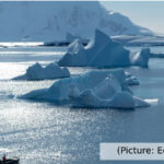 Extreme Life Beneath Antarctica's Ice Shelves Poses Several Questions