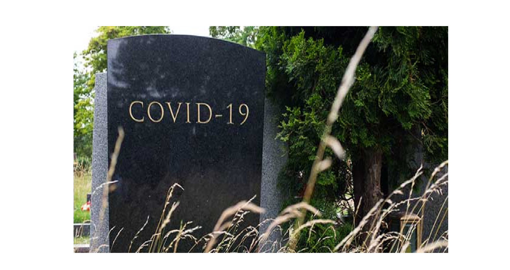 Covid Was Third Leading Cause Of Death In US In 2020