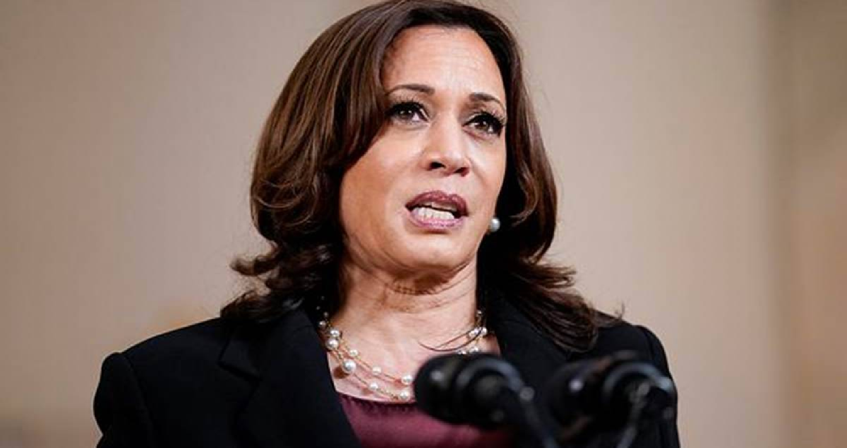 Kamala Harris Describes India's Covid Situation As Heartbreaking