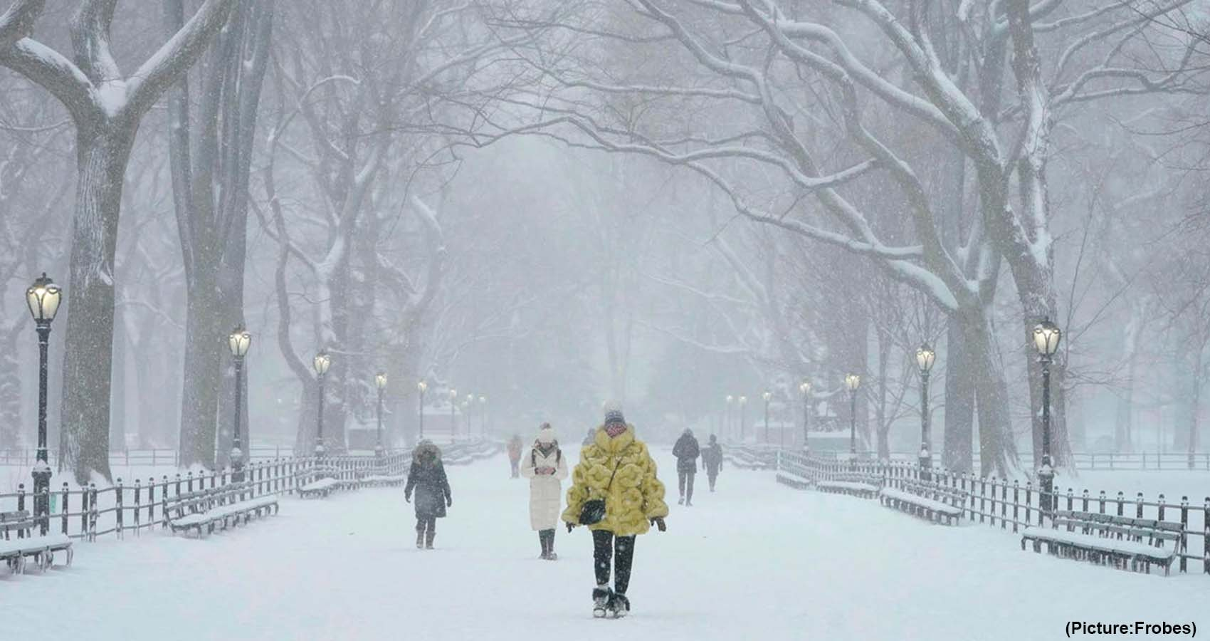 Arctic Warming Can Cause Severe Winter Weather