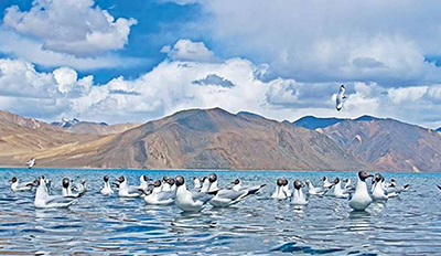 India To Launch Mega Tourism Event In Leh
